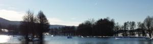 wakeboard_oberthulba